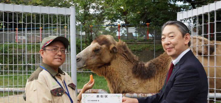 天王寺動物園 フタコブラクダのジャックちゃん 28歳 ご長寿表彰
